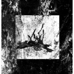 MARASME · De llums i ombres  LP (Black)