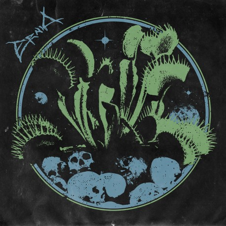 Ernia · Ernia LP (Black)